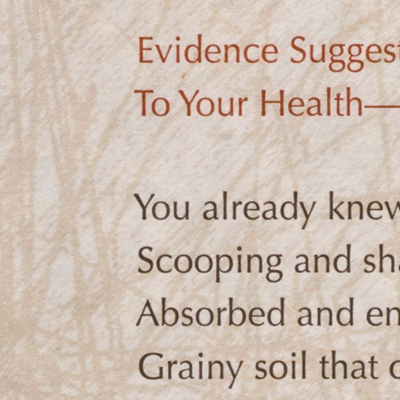 Evidence Suggests That Dirt Is Beneficial To Your Health
